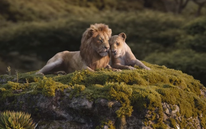 Promo Baru 'The Lion King' Tampilkan Duet Soundtrack Romantis 'Can You Feel the Love Tonight'